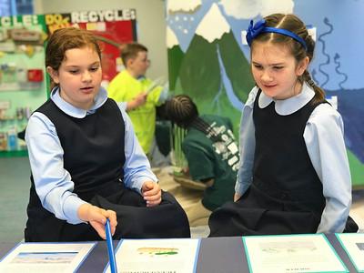 Lower School STEAM Fair  - Feb 7, 2020