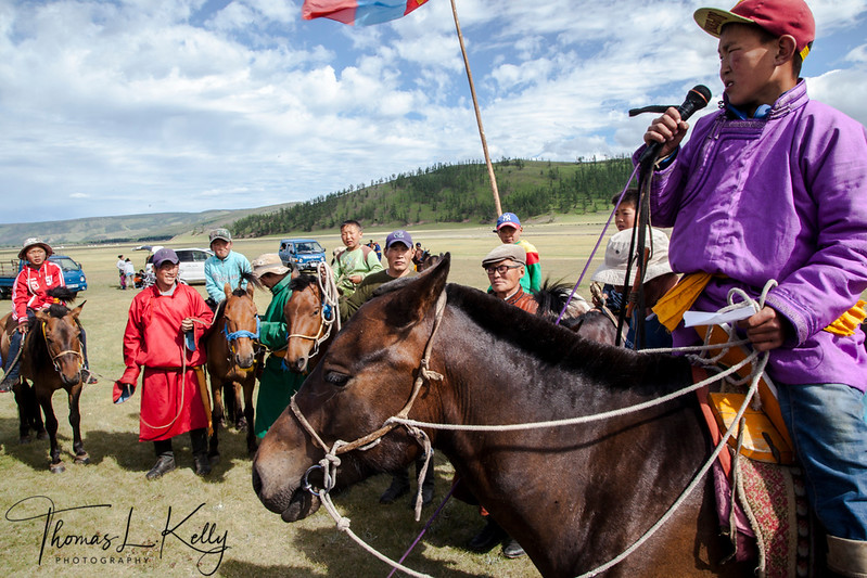 Horse Race at Naadam Festival