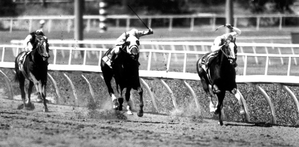 . Racing at Hollywood Park. 6/29/91  (Los Angeles Daily News file photo)