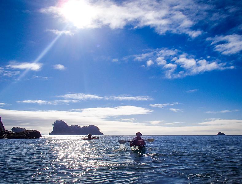 2014-08 New Zealand 0545