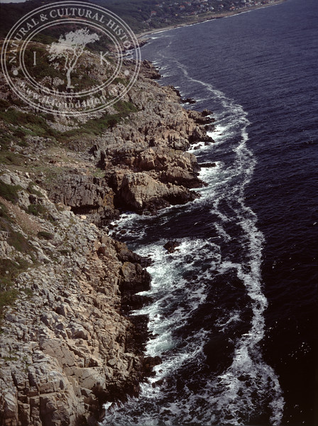 Kullen peninsula, Kullaberg south (1990) | PH.0078