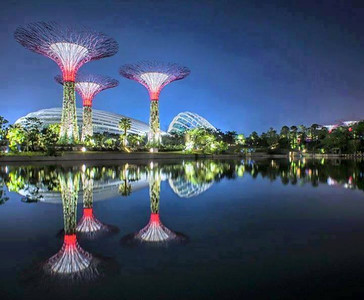 The endless beauty of artificial trees of Singapore.