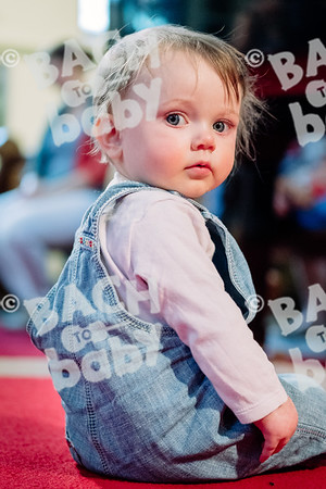 © Bach to Baby 2018_Alejandro Tamagno_Sydenham_2018-05-09 024.jpg