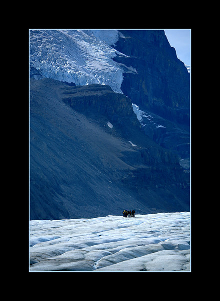 Group of Hikers on Athabasca Glacier, Banff National Park