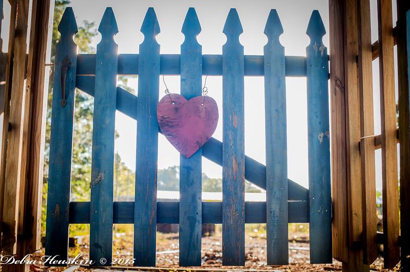 SPR We've Got Heart - Laura Street Community Garden 2015