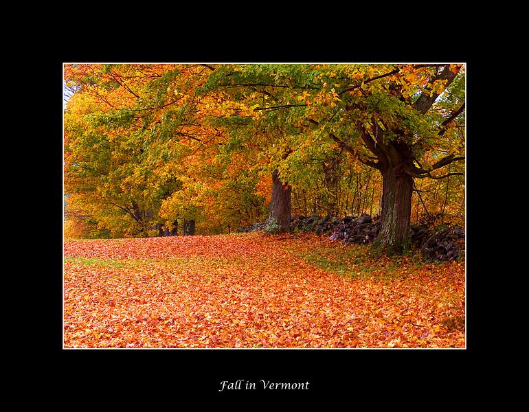 Vermont05-1.jpg