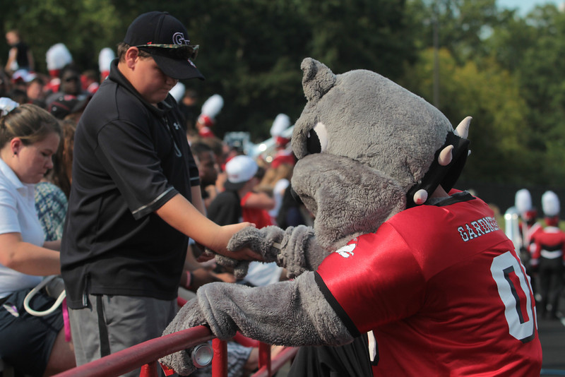 A fan helps the bulldog up in the stands.