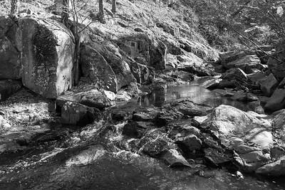 Hawn State Park November 8 2015