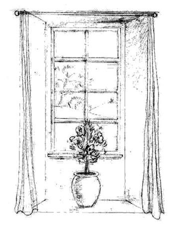 Window+Vaso.jpg
