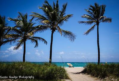 Florida Road Trip April '13
