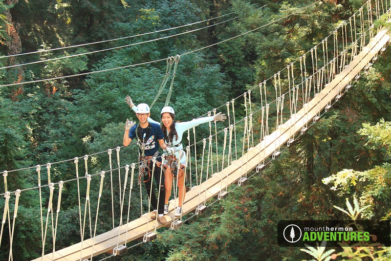 redwood_bridge_1473461475671.jpg