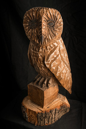 Big Wooden Owl-240114