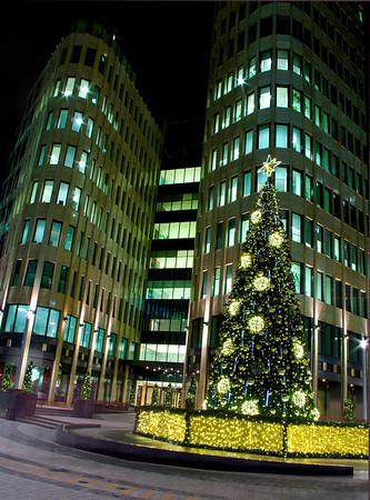 WS Christmas tree