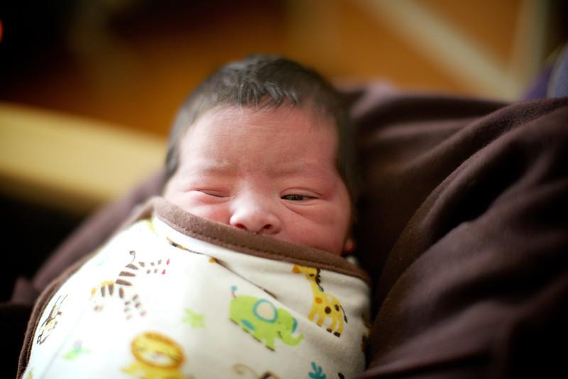 0117-SP012264-birth.jpg