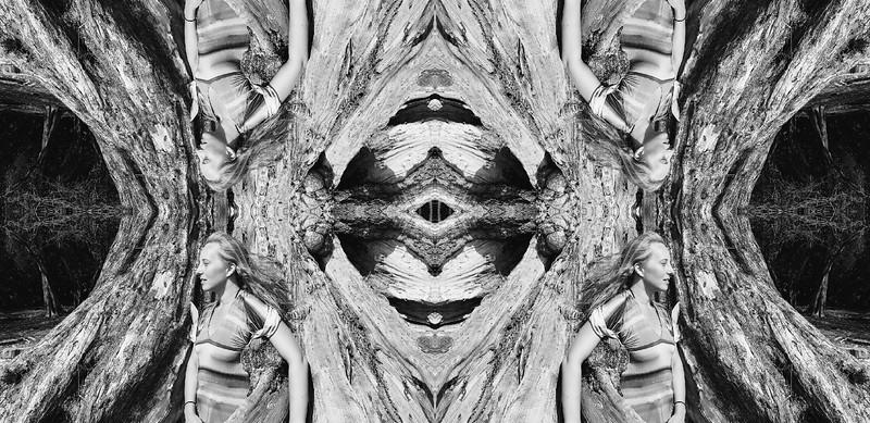 15833_mirror2.jpg