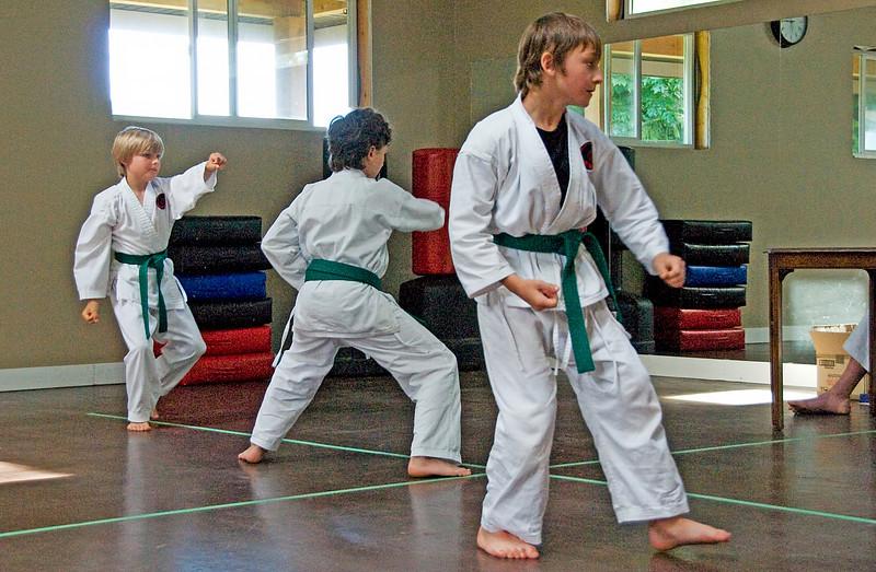 Nic(martial art)20100619A-7006A.jpg