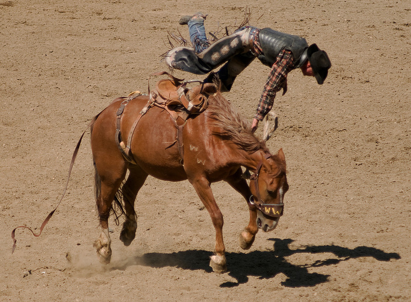 COOMBS RODEO-2009-3688A.jpg