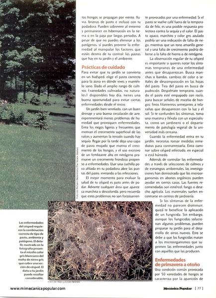 guerra_de_cesped_junio_2001-02g.jpg
