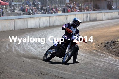 The Wyalong Cup