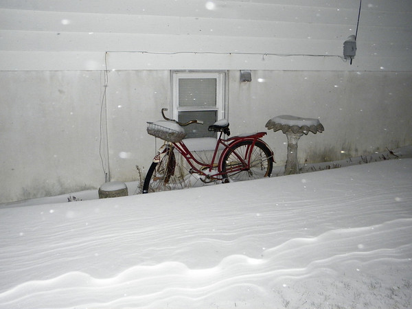 snow pics 12-27-10