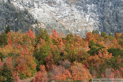 Fall 2006: Provo Canyon and the Wasatch