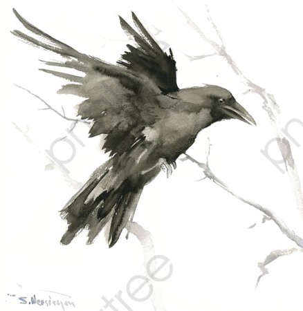 crow-png-clipart_2504664.png