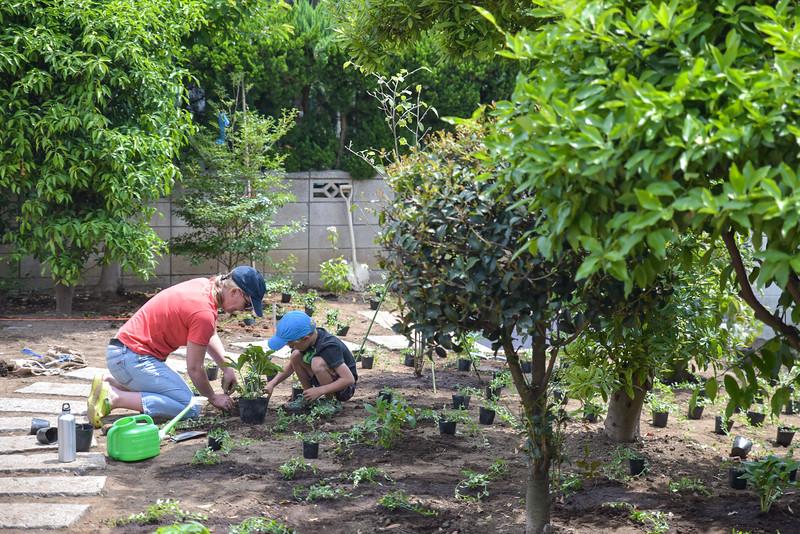 ICJC Garden Project-5367.jpg