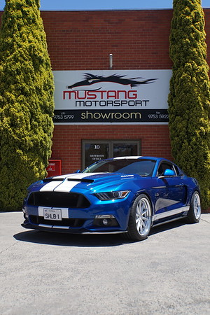 Cervini - Roush - Vossen