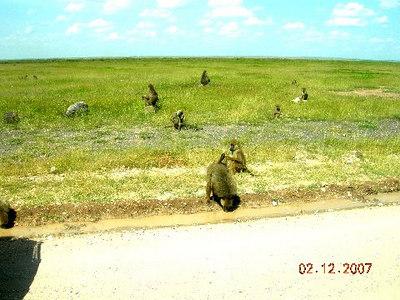 MOMBASA, KENYA (2/12/2007)