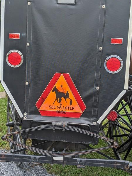 Amish Youth Buggy