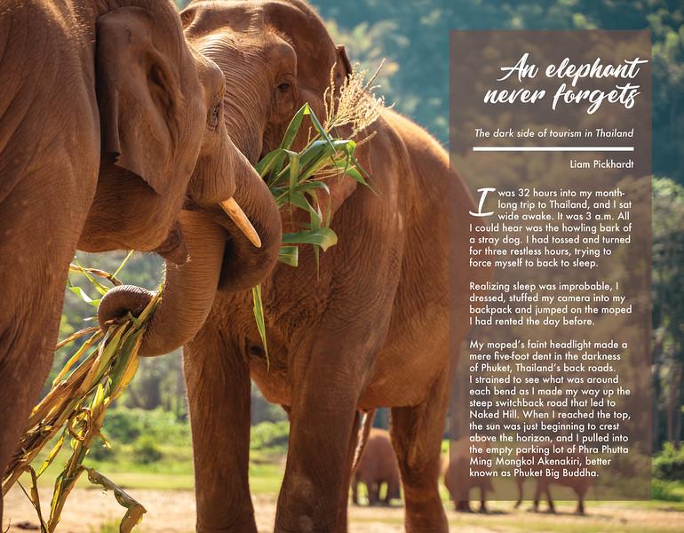 elephant magazine final_WEB2.jpg