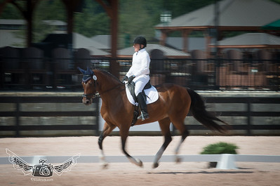 John Boyle @ Tryon International Equestrian Center Dressage