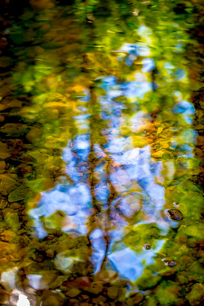 Reflections 4