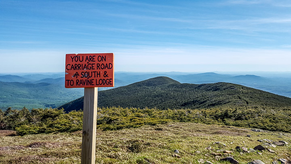 2017-Week 22 - Going Down from Mt. Moosilauke.jpg