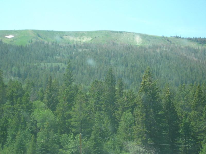 2008-07-24-YOCAMA-Montana_2705.jpg