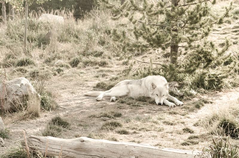 MontanaDay2-123.jpg