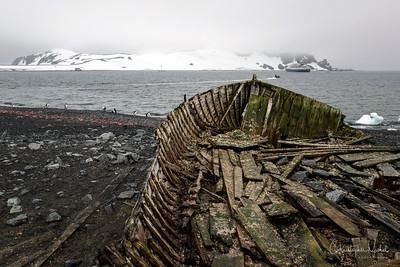 Polar Leica