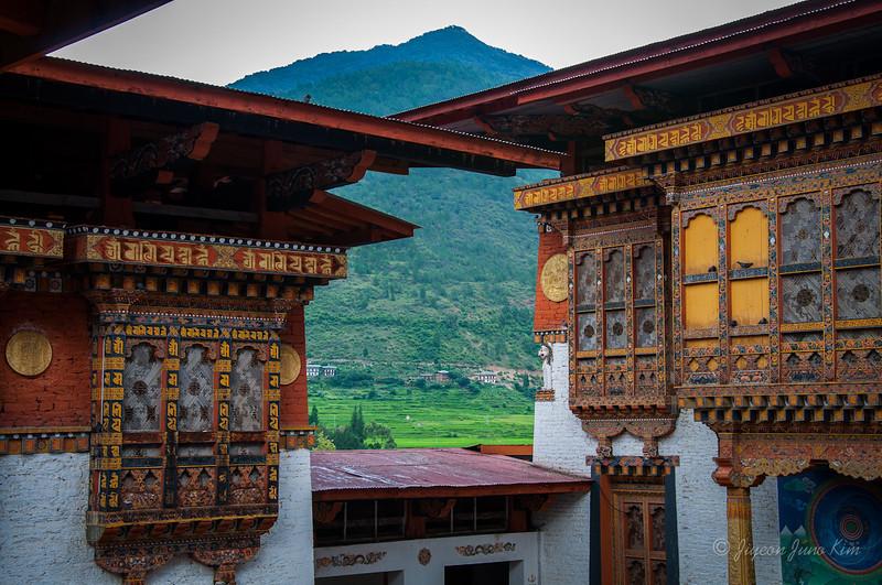 Bhutan-Punakha-8372.jpg