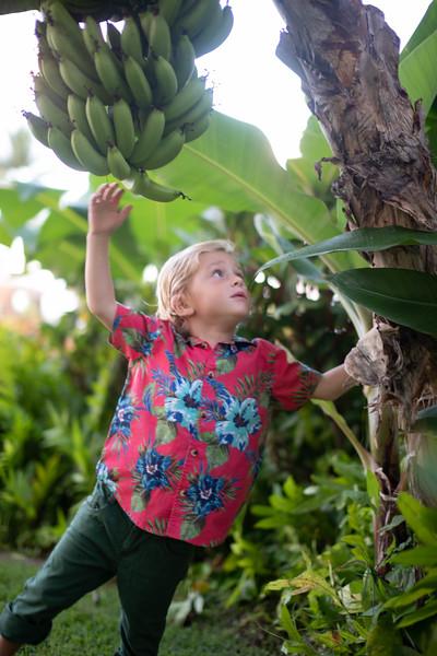 grand hyatt kauai-72.jpg