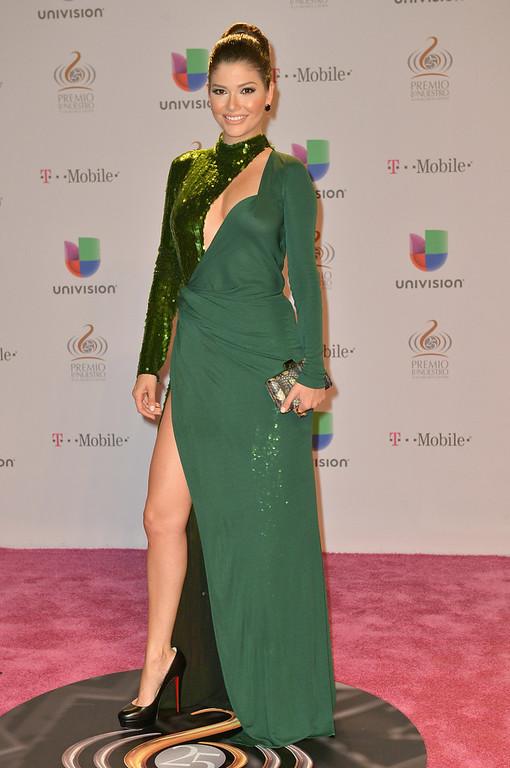 ". Ana Patricia Gonzalez arrives at the 25th Anniversary Of Univision\'s \""Premio Lo Nuestro A La Musica Latina\"" on February 21, 2013 in Miami, Florida.  (Photo by Gustavo Caballero/Getty Images for Univision)"