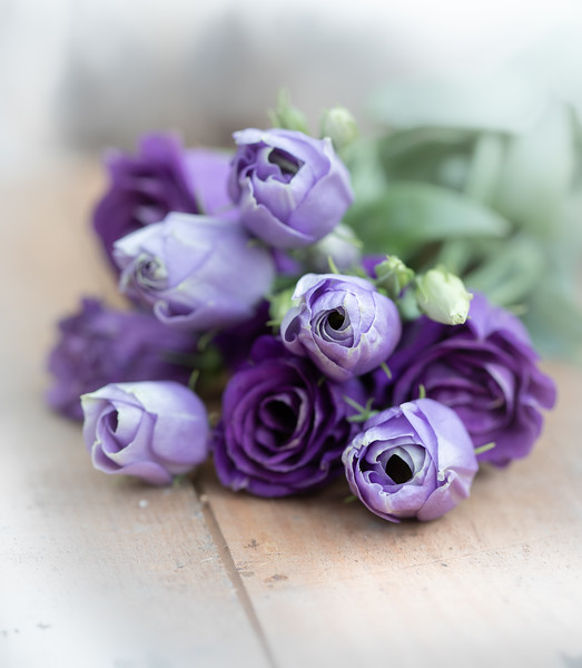 Purple flowers x.jpg