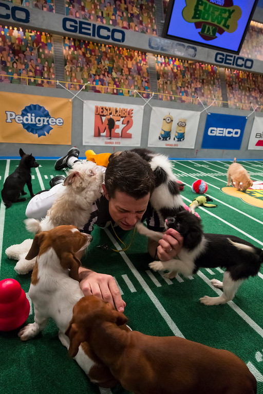. Referee calls nap time during Puppy Bowl IX(Photo credit: Animal Planet)