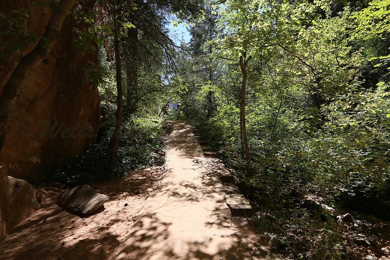 Path down refrigerator cyn 3.jpg