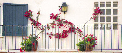 017 flower railing portugal spring96 cut2 warm81 0033