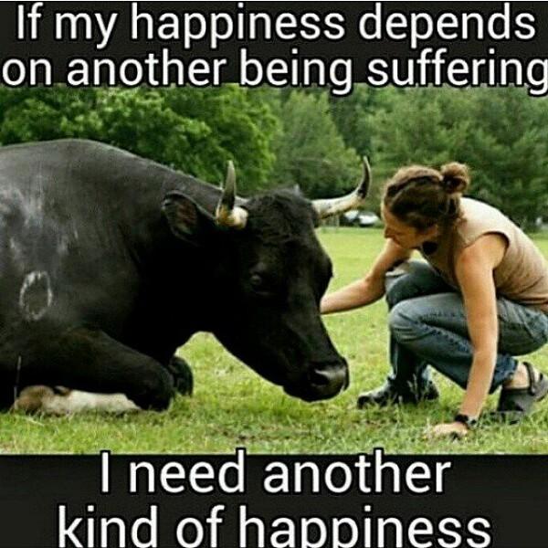 conscious-FreshGreenSmoothies_com-Vegan-Intelligent-Compassionate-raworganicvegan-plantbased-greensmoothies7180.jpg