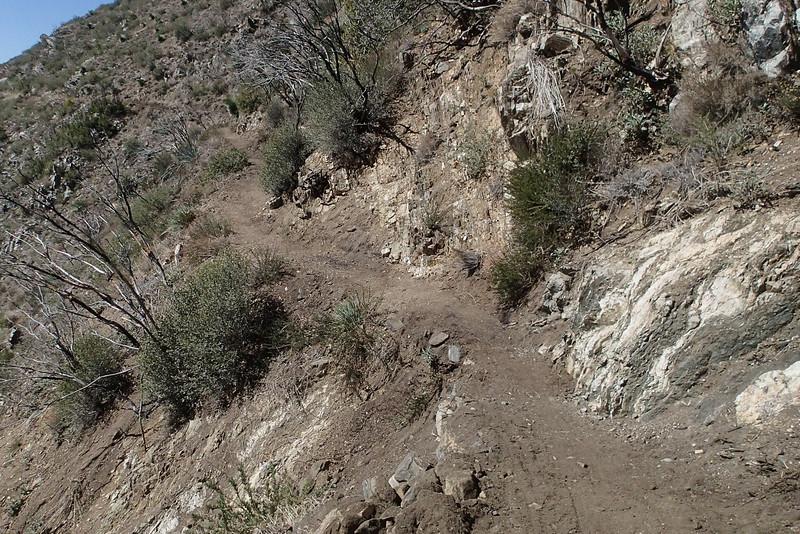 20140316033-Strawberry Peak Trailwork