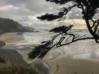 Oregon COVID Travels- North Oregon Coast 11-12-20