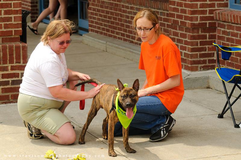 20110514 PetSmart Adoption Event-16.jpg