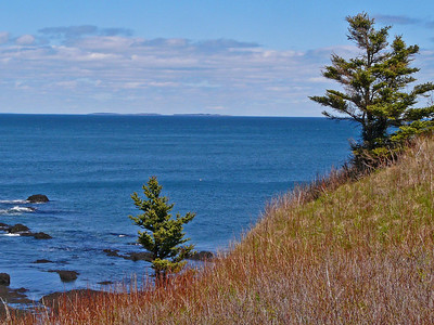 Walk to Ragged Head, Campobello