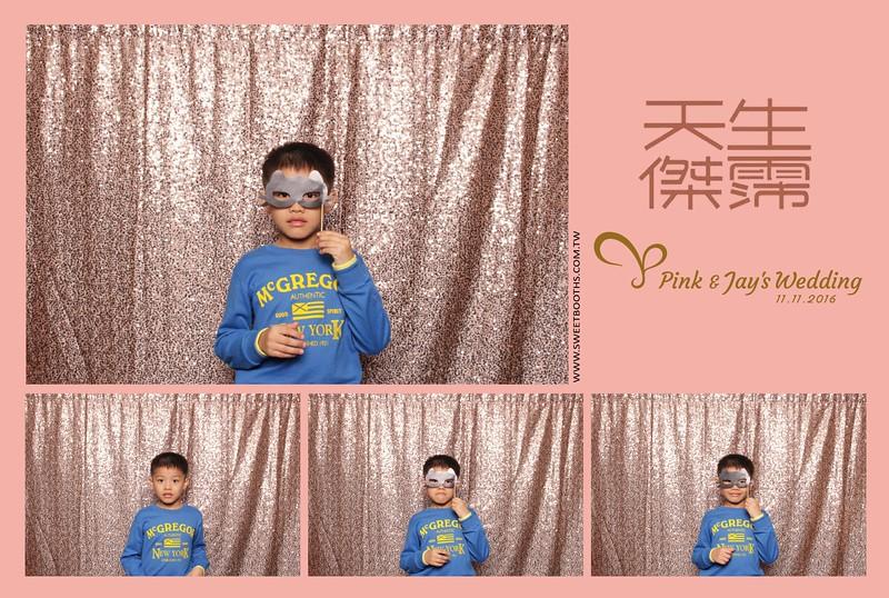 Pink.Jay (119).jpg